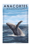 Anacortes, Washington - Humpback Whale Posters by  Lantern Press