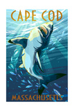 Cape Cod, Massachusetts - Great White Shark Prints by  Lantern Press