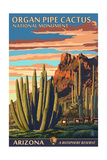 Organ Pipe Cactus National Monument, Arizona Print by  Lantern Press