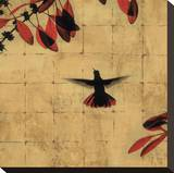 Colibri II Stretched Canvas Print by Chris Donovan