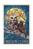 Oregon Coast - Owl and Owlet Prints