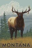 Montana - Elk Scene Prints by  Lantern Press