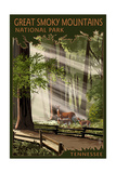 Great Smoky Mountains, Tennessee - Pathway in Trees Prints by  Lantern Press