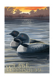 Lake Winnisquam, New Hampshire - Loon Scene Posters by  Lantern Press