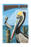 Fernadina Beach, Florida - Brown Pelican Prints by  Lantern Press