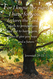 Jeremiah 29:11 - Inspirational Plakater af  Lantern Press