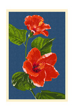 Red Hibiscus Prints by  Lantern Press