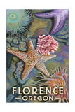 Florence, Oregon - Tidepool Posters by  Lantern Press