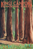 Forest Grove in Spring - Kings Canyon National Park, California Posters by  Lantern Press