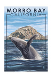 Morro Bay, CA - Humpback Whale Prints by  Lantern Press