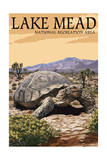 Lake Mead - National Recreation Area - Tortoise Schilderijen van  Lantern Press