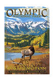 Olympic National Park - Hurricane Ridge Posters by  Lantern Press