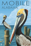 Brown Pelican - Mobile, Alabama Prints by  Lantern Press