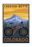Crested Butte, Colorado - Mountain Bike Scene Poster