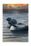 The Adirondacks, New York State - Loons at Sunset Posters by  Lantern Press
