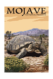 Tortoise - Mojave National Preserve, California Schilderijen van  Lantern Press