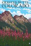 Crested Butte, Colorado - Fireweed and Mountains Posters by  Lantern Press