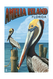 Amelia Island, Florida - Brown Pelican Print by  Lantern Press