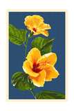 Yellow Hibiscus Prints by  Lantern Press
