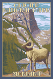 Glacier National Park, Montana - Big Horn Sheep Posters by  Lantern Press