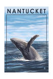 Nantucket, Massachusetts - Humpback Whale Prints by  Lantern Press
