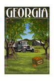 Atlanta, Georgia - Peach Orchard Affiches par  Lantern Press