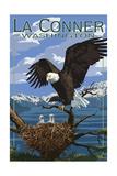 Eagle and Chicks - La Conner, Washington ポスター : ランターン・プレス