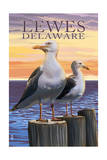 Lewes, Delaware - Seagulls Posters