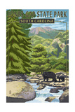 Jones Gap State Park, South Carolina - Creek and Bear Family Prints by  Lantern Press