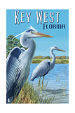 Key West, Florida - Blue Heron Posters by  Lantern Press