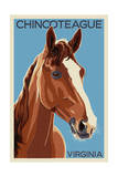 Chincoteague, Virginia - Horse Poster by  Lantern Press
