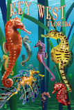 Key West, Florida - Seahorses Prints by  Lantern Press