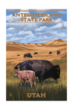 Bison and Calf Grazing - Antelope Island State Park Prints by  Lantern Press