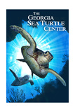 Georgia Sea Turtle Center, Georgia - Sea Turtle Diving Kunst van  Lantern Press
