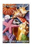 Port Gamble, Washington - Shells Montage Poster by  Lantern Press