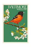 Oriole - Baltimore, MD Print by  Lantern Press