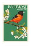 Oriole - Baltimore, MD Print by  Lantern Press