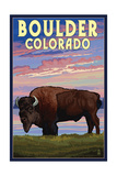 Boulder, Colorado - Bison and Sunset Posters by  Lantern Press