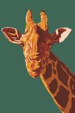 Giraffe Up Close Posters by  Lantern Press