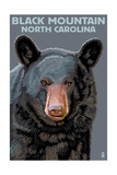 Black Bear Up Close - Black Mountain, North Carolina Posters by  Lantern Press