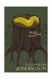Bellingham, Washington - Banana Slug Prints by  Lantern Press