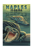 Naples, Florida - Alligators Poster by  Lantern Press