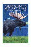 The Adirondacks - Lake Placid, New York State - Moose at Night Prints