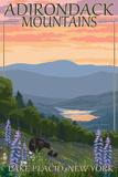 Adirondacks Mountains - Lake Placid, New York - Bears and Spring Flowers Posters