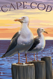 Cape Cod, Massachusetts - Seagulls Prints by  Lantern Press