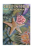 Carpinteria, California - Tidepool Prints by  Lantern Press