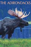 The Adirondacks - Moose at Night Art