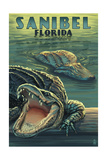 Sanibel, Florida - Alligators Prints by  Lantern Press