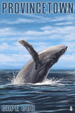 Provincetown, Massachusetts - Humback Whale Posters by  Lantern Press