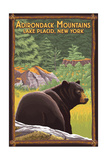 The Adirondacks - Lake Placid, New York - Black Bear in Forest Art by  Lantern Press